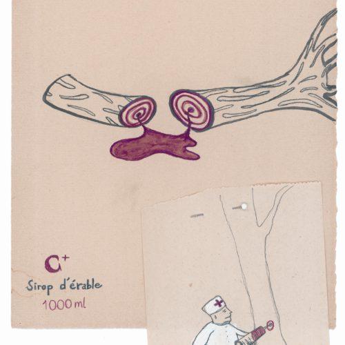 Sirop d'érable,2006