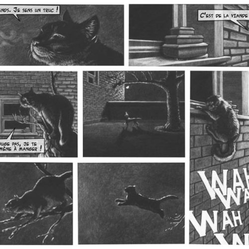 web-Page2-odrade